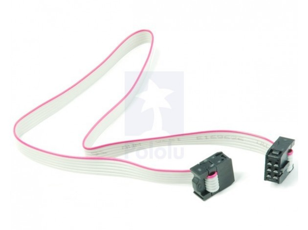 6-Conductor Ribbon Cable with IDC Connector 12''